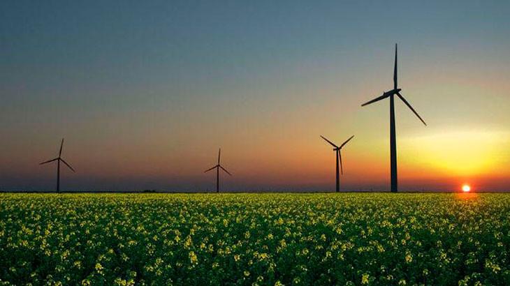Energia-renovável-gera-quase