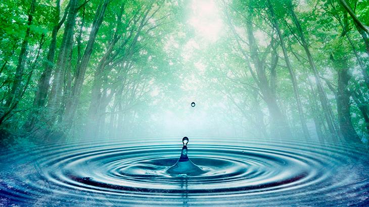 Água e saneamento são direitos essenciais