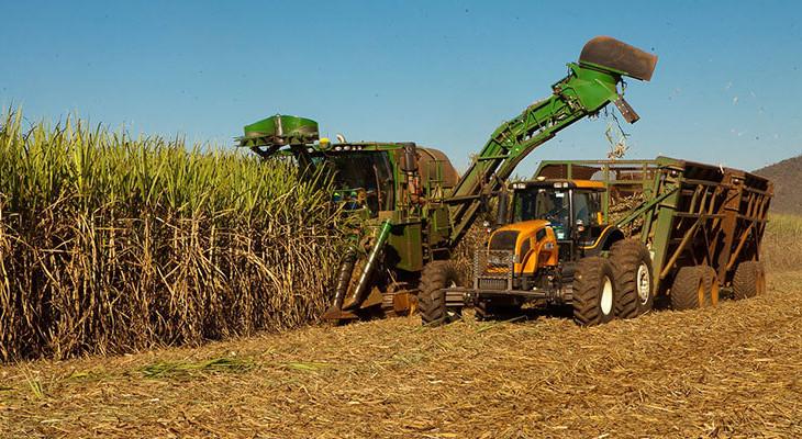excell-bombas-excesso-de-acucar-no-mercado-internacional-projeta-safra-com-alta-de-etanol-e-preco-menor-nas-bombas-(1)