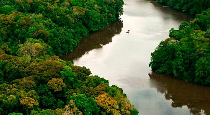 excell-bombas-Amazônia-sofre-danos-